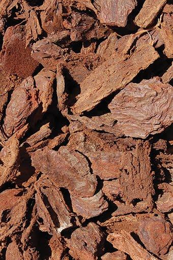 bag-Reptile Bark Chips